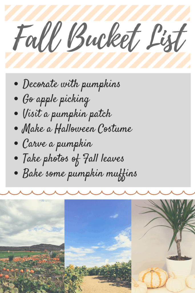Fall Bucket List, Fall Fun, Pumpkins