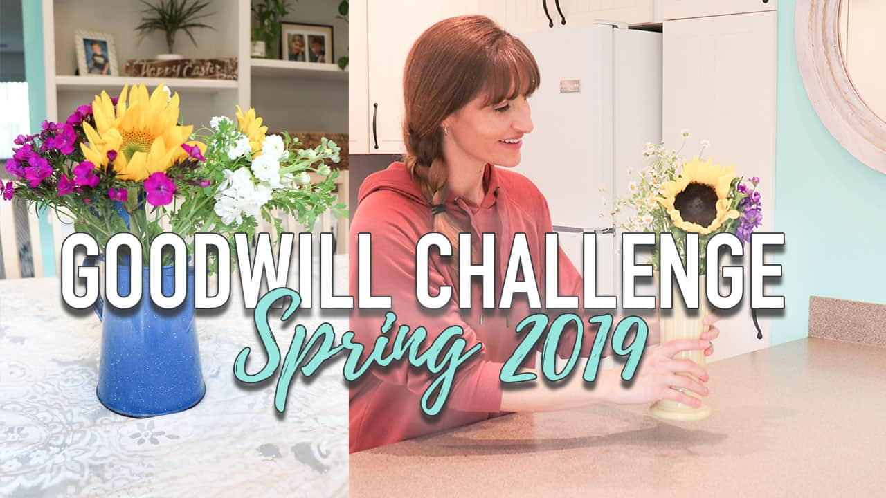 $5 Goodwill Challenge - Spring Inspiration