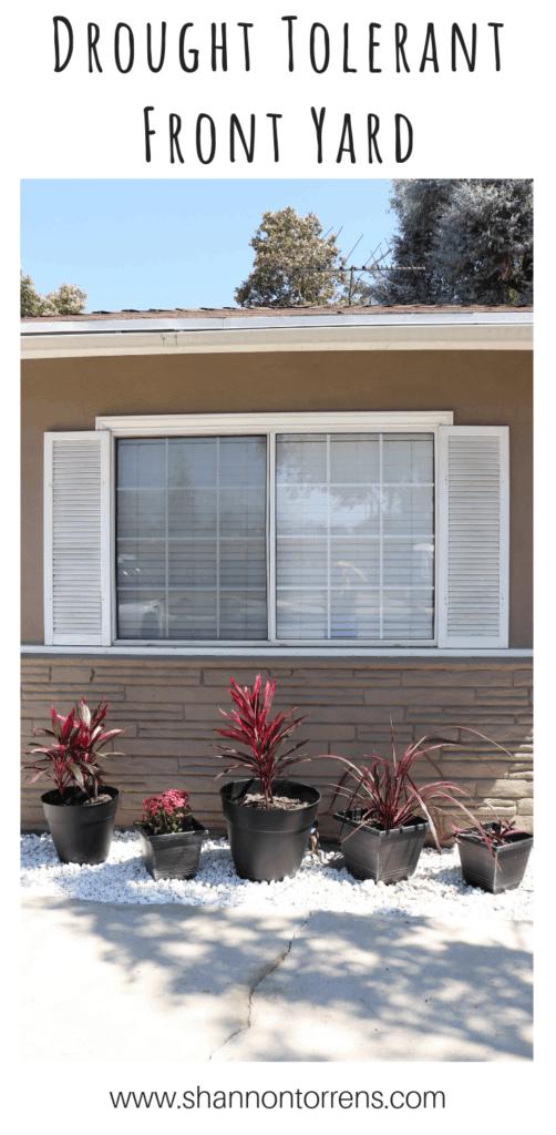 Drought Tolerant front yard landscape