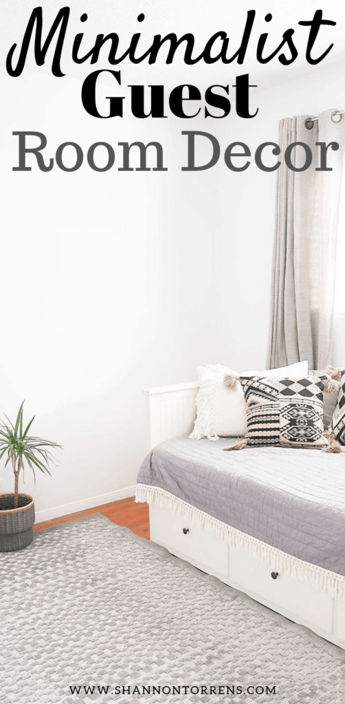 Minimalist Guest room decor