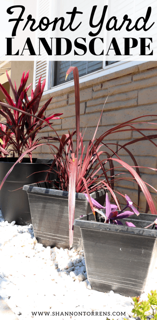 Drought Tolerant Landscape - front Yard