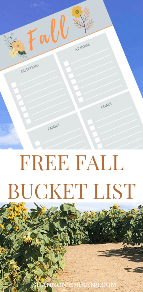 Free Fall Bucket List