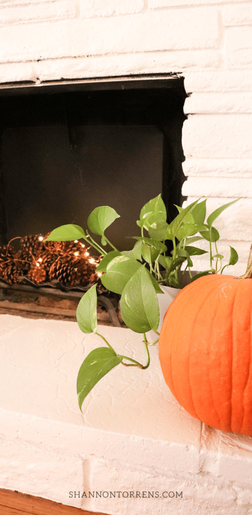 Tips for Hosting a Fall Theme Party