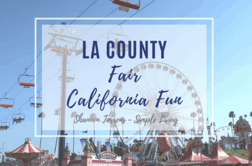 La County Fair California fun things to do