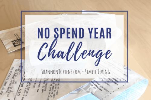 no spend year challenge