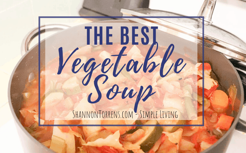 the best vegetable soup