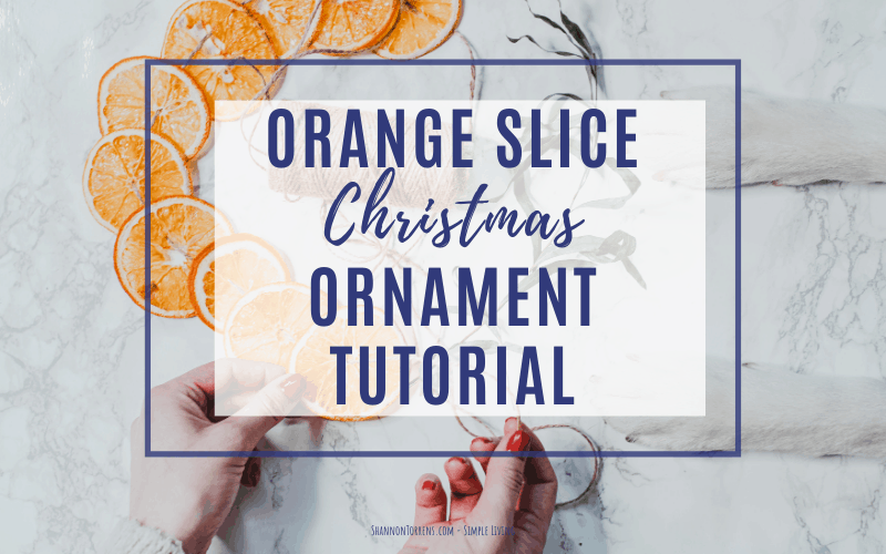 Christmas orange slice garland