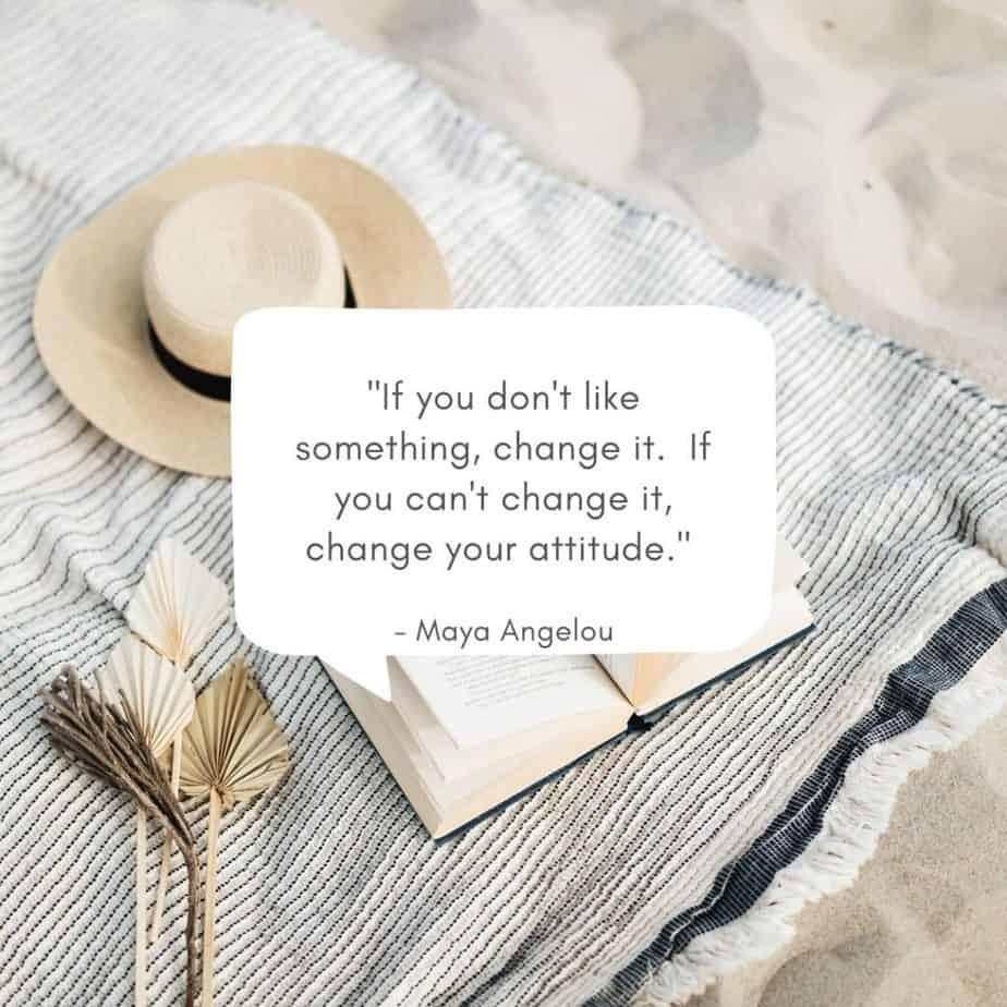 """""""If you don't like something, change it. If you can't change it, change your attitude."""" - Maya Angelou"""