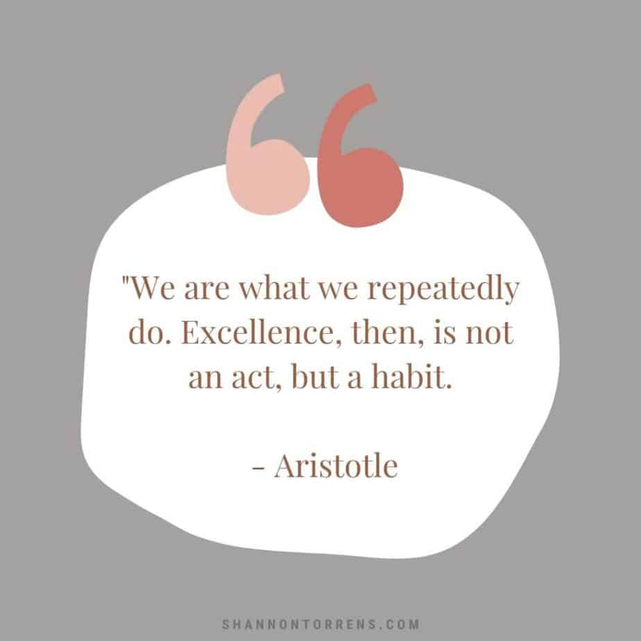 """""""We are what we repeatedly do. Excellence, then, is not an act, but a habit. - Aristotle"""