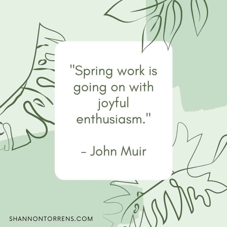 Spring quote